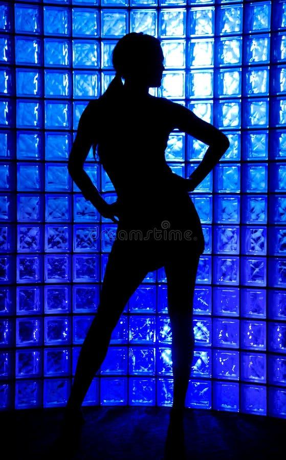 Download Silhouette stock photo. Image of bikini, body, fresh, dress - 6271352