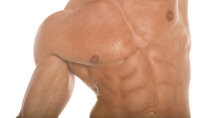 Sixpack Abs Royalty Free Stock Photography