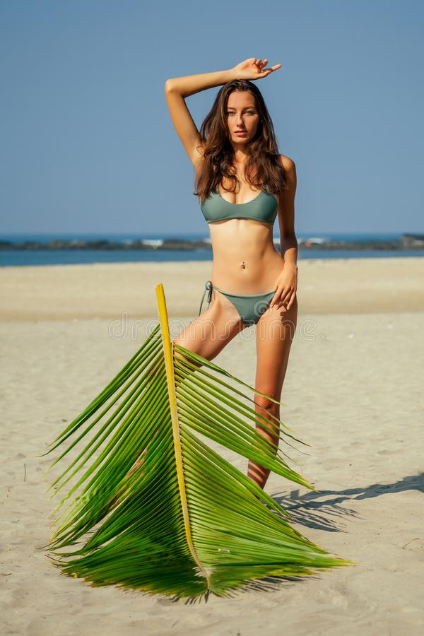 Sexy slender long leggy brunett photo model on the beach with palms and blue sky.woman in a green swimsuit posing in a. Tropical paradise.female sunscreen royalty free stock image