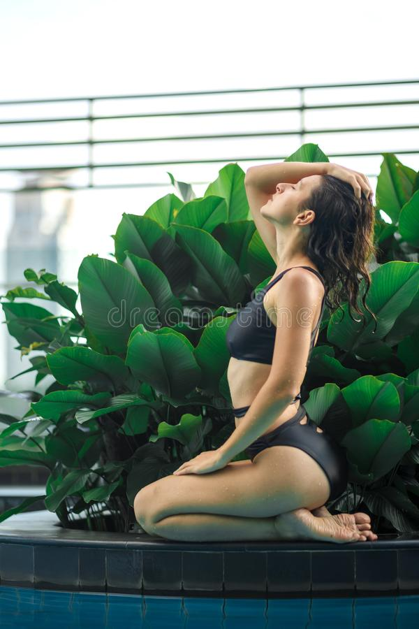 Sexy slim female posing between green plants in pool on rooftop with cityscape. Luxury holidays in Asia stock image