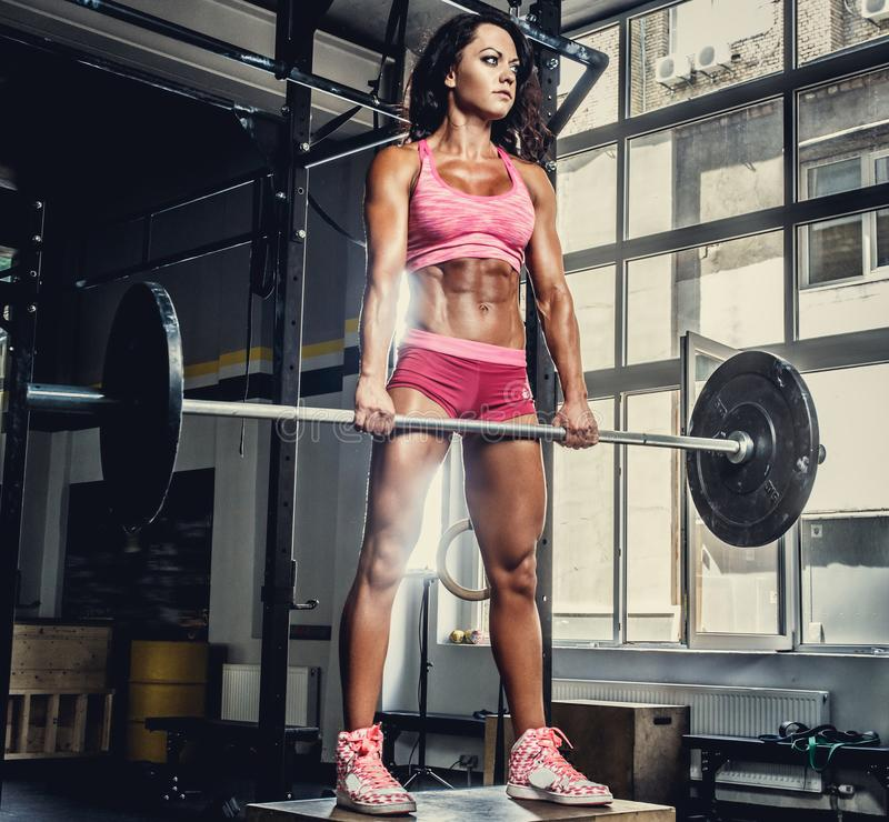 sporty female in pink sportswear holding barbell. stock photography