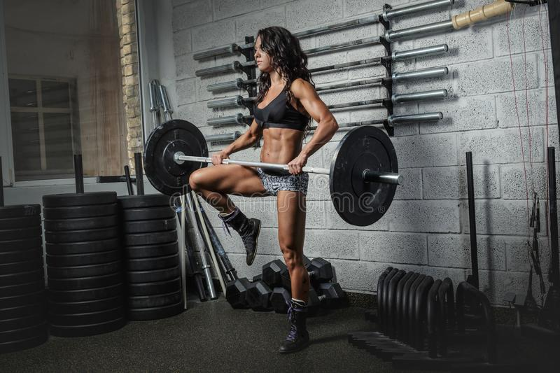 sporty female in pink sportswear holding barbell. royalty free stock photo