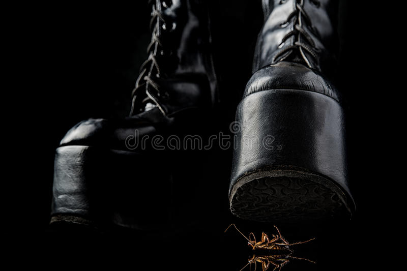 Download Thigh-high Lace-up Stock Photo - Image: 83724513