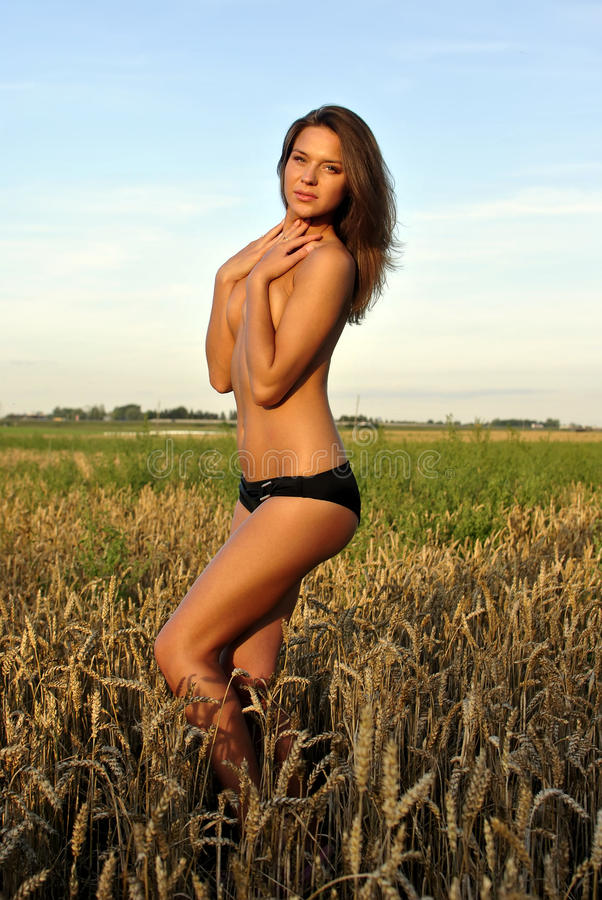 Topless girl in field. Topless girl posing in the field stock image