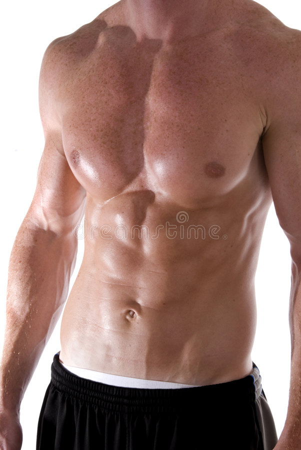 Download Torso stock photo. Image of strong, strength, bicep, shoulders - 2768926