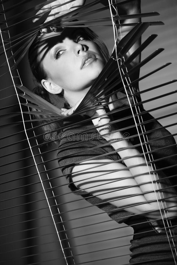 Sexy vrouw in zwarte kleding en jaloezie royalty-vrije stock fotografie