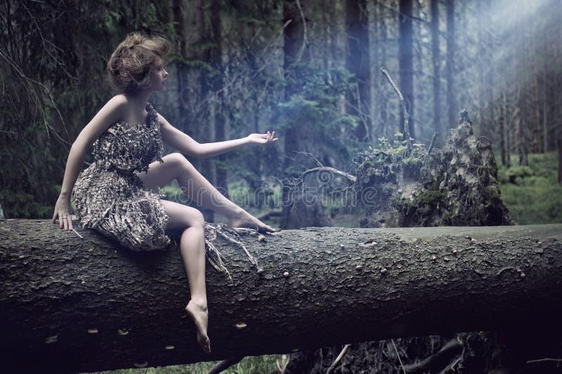 Sexy vrouwen die op de boom zitten royalty-vrije stock foto
