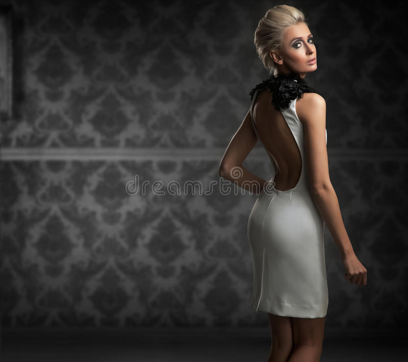 Download Woman stock photo. Image of makeup, dress, portrait, posing - 20579288