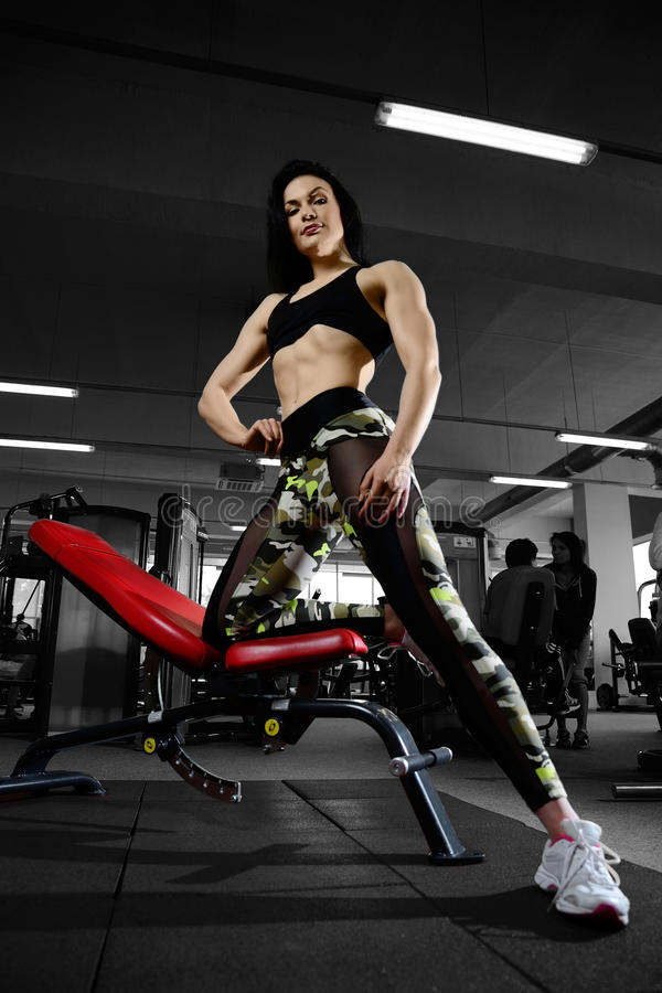 Woman doing exercises in gym. Fitness strength training workout bodybuilding concept background - muscular bodybuilder woman doing exercises in gym royalty free stock image