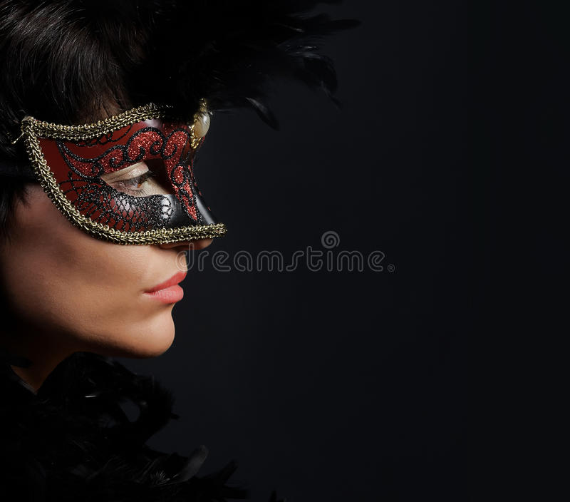 Download Woman in mask stock image. Image of costume, beautiful - 11063635
