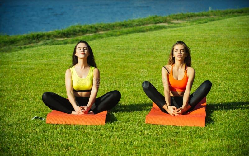 Sexy women athletes do yoga exercises, training royalty free stock image