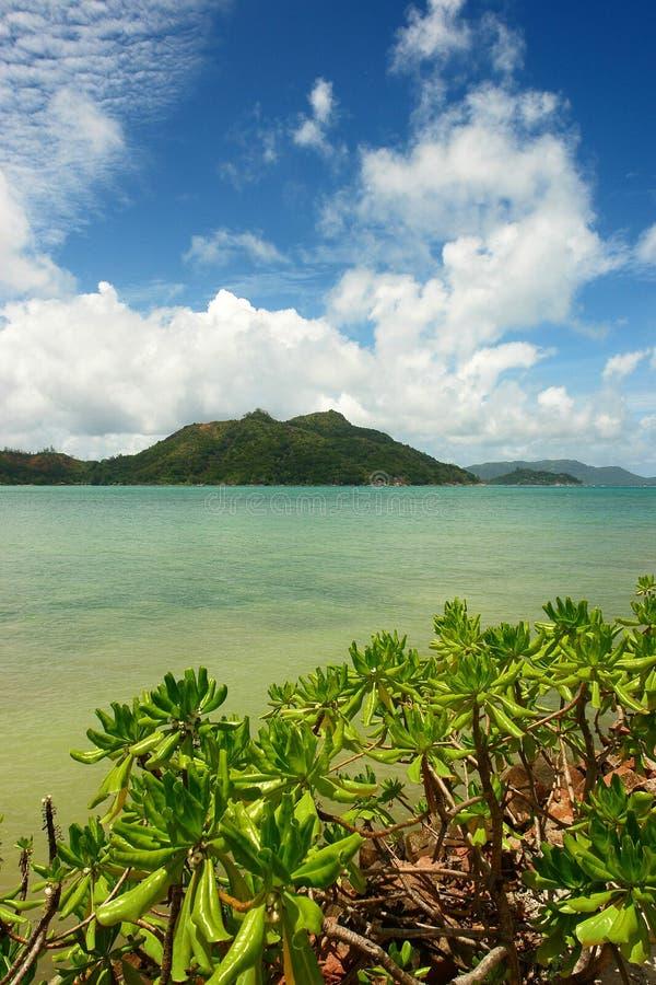 Seychellen. lizenzfreie stockfotografie