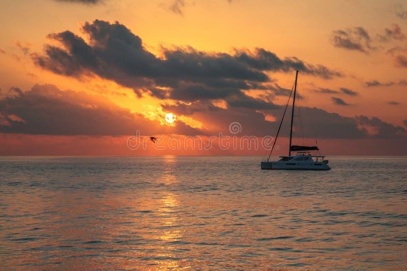 seychellen stock foto