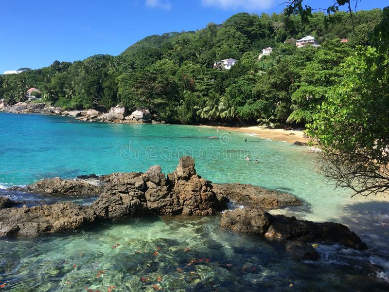 Seychellen-Strand stockbild