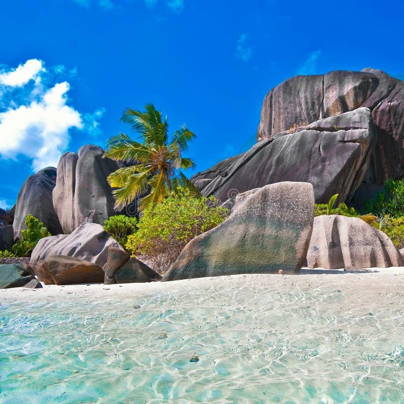 Seychellerna royaltyfria bilder