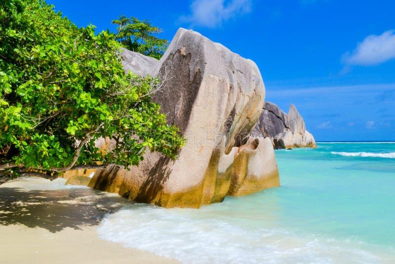 Seychellerna drömstrand royaltyfri fotografi