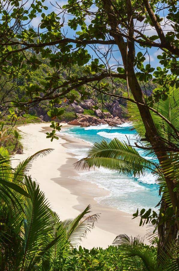 Seychellerna LaDigue ö arkivfoton