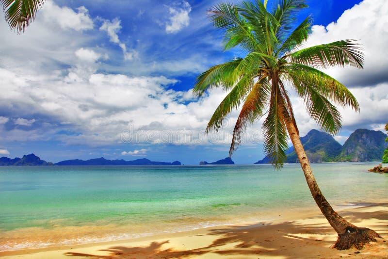 Seychellerna wild strand arkivfoto