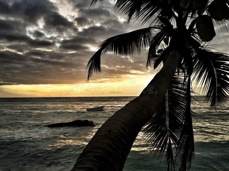 Seychelles obraz royalty free