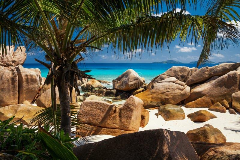 seychelles royaltyfri fotografi