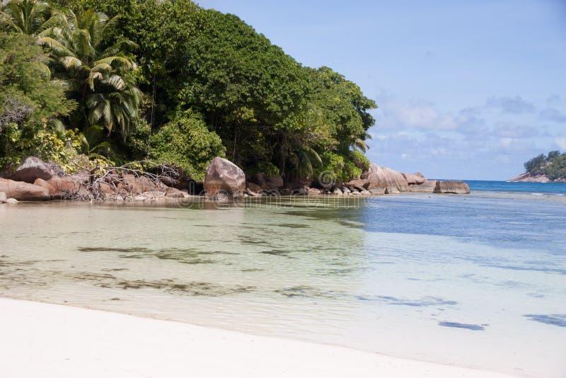 Seychelles Baie Lazare Palmowy cień fotografia royalty free