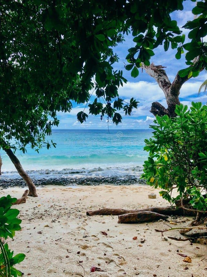 Seychelles Silhouette Island beach royalty free stock image