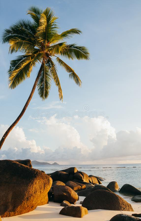 Seychelles Silhouette Island beach. royalty free stock images