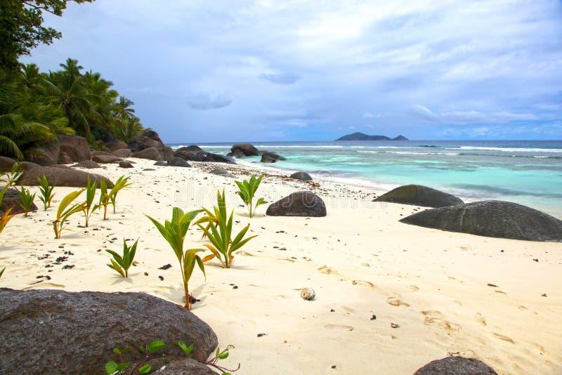 Seychelles, sylwetki wyspa fotografia stock