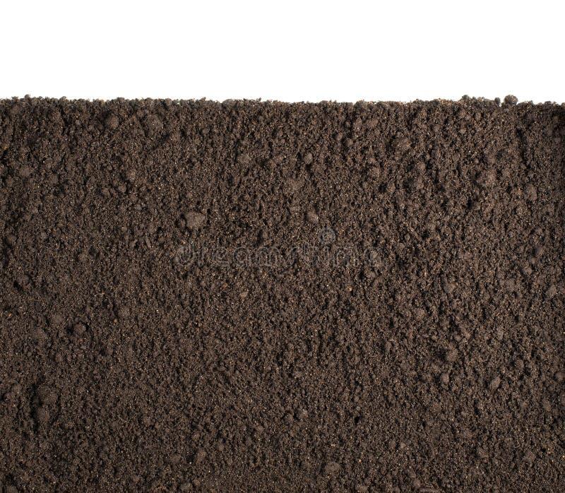 Sezione della sporcizia o del suolo isolata su fondo bianco fotografia stock libera da diritti