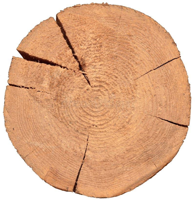 Sezione di legno delle Ass.Comm. immagine stock libera da diritti
