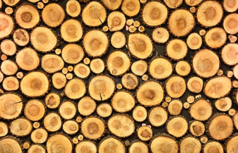 Sezione trasversale dei ceppi di legno legati su una parete fotografia stock