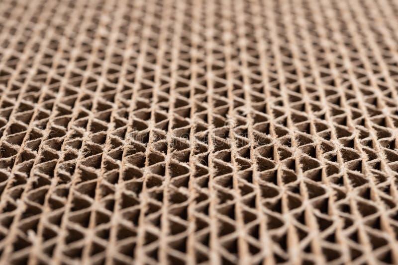 Sezione trasversale del modello ondulato del cartone come baskground e struttura ad angolo & fuoco selettivo immagine stock