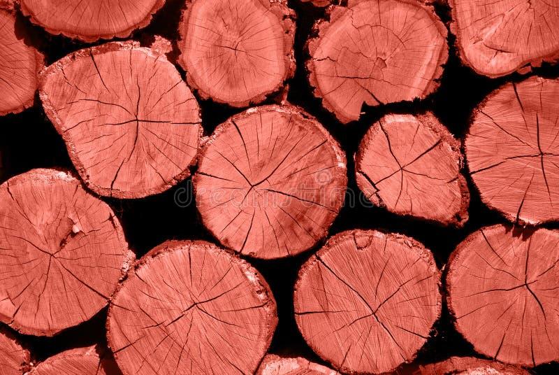 Sezione trasversale di corallo di colore del legname Una pila di legna da ardere asciutta ha risieduto in un mucchio immagazzinat fotografia stock libera da diritti