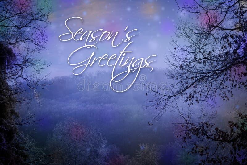 Sezonów powitań karta ilustracji