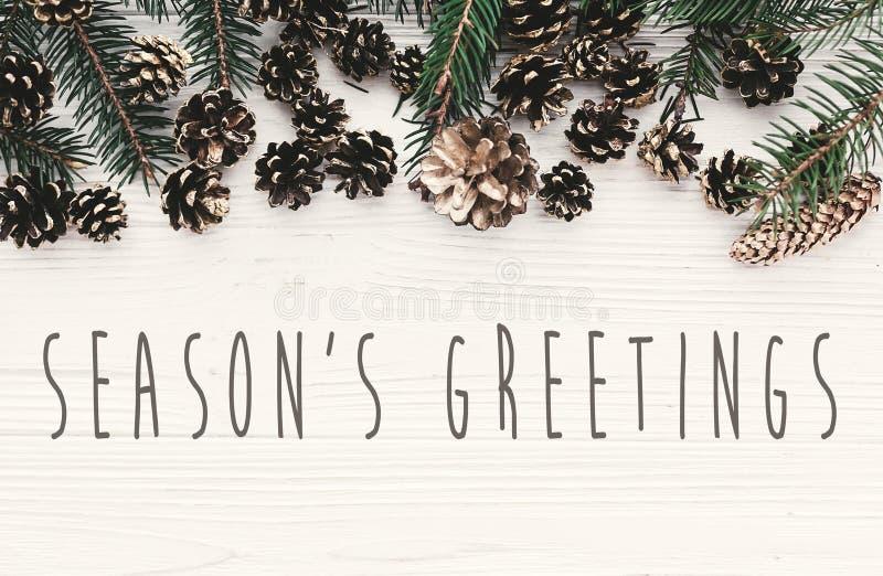 Sezonów powitań tekst na nowożytnym bożego narodzenia mieszkaniu kłaść z zielenią zdjęcia royalty free