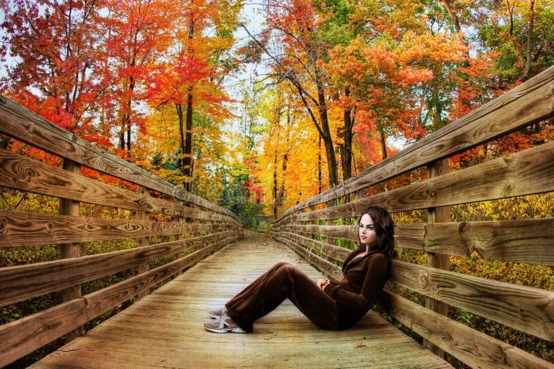 sezon jesienny obrazy stock