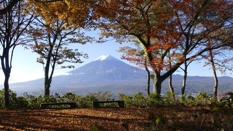 Sezon jesienny Fuji góra obraz stock