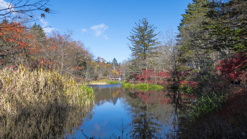 Sezon jesienny kamikochi park narodowy, Japonia obrazy stock