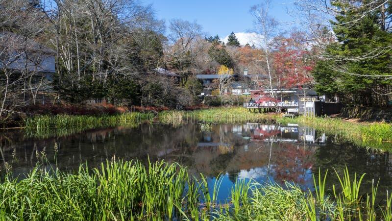 Sezon jesienny kamikochi park narodowy, Japonia zdjęcie royalty free