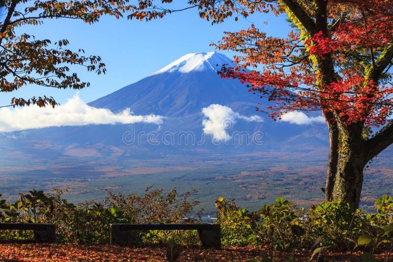 sezon jesienny Mt Fuji w Japonia z ładnym żółtym kolorem zdjęcie stock