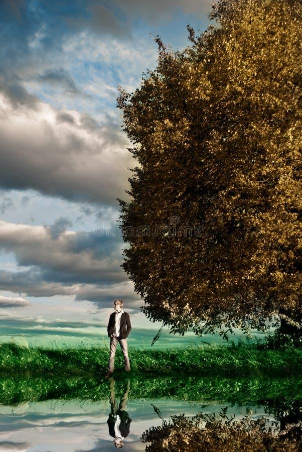 sezon jesienny widok fotografia stock