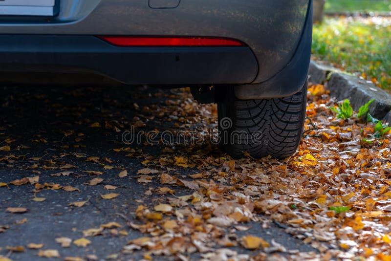 Sezon opony zmiana Samochód z nową zimą męczy na drodze dla jesień liści obrazy stock