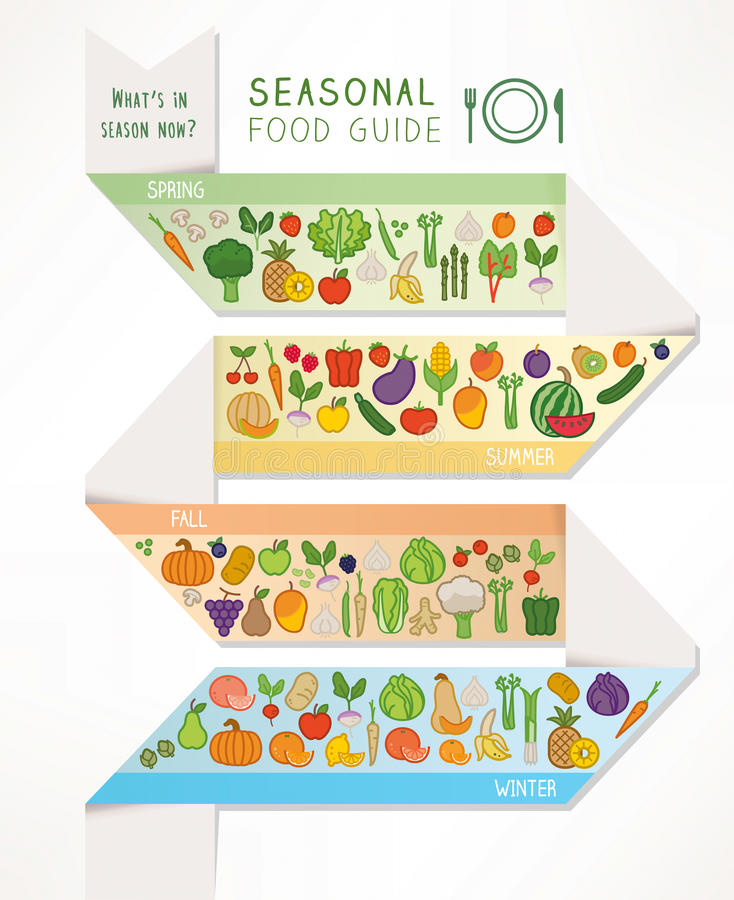 Sezonowy jedzenia i produkt spożywczy przewdonik royalty ilustracja