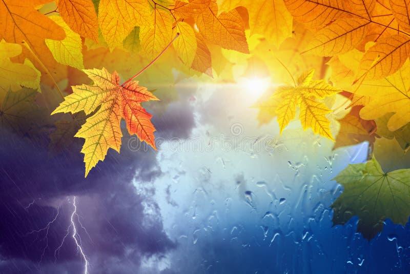 Sezonowy jesieni tło, spadek prognozy pogody pojęcie fotografia royalty free