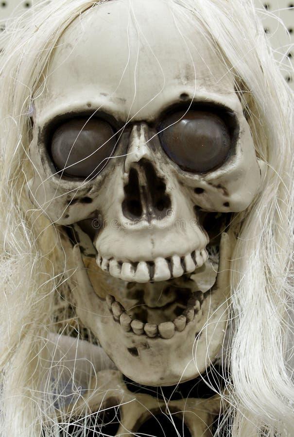 sfałszowana czaszka fotografia stock