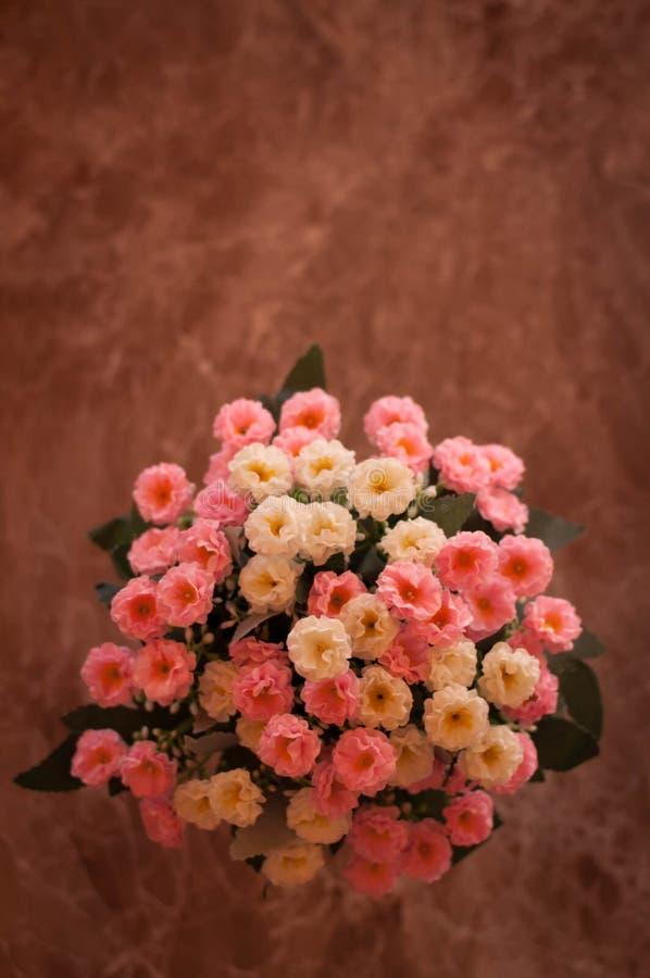 Sfałszowani kwiaty fotografia stock