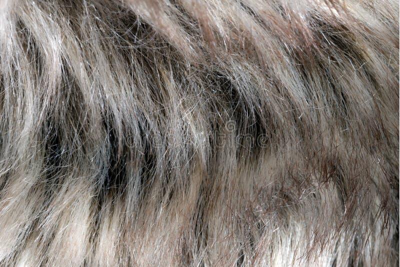 Sfałszowany futerkowy szczegół zdjęcie royalty free