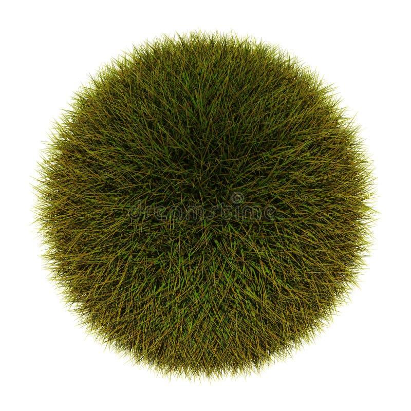 Sfera dell'erba fotografie stock