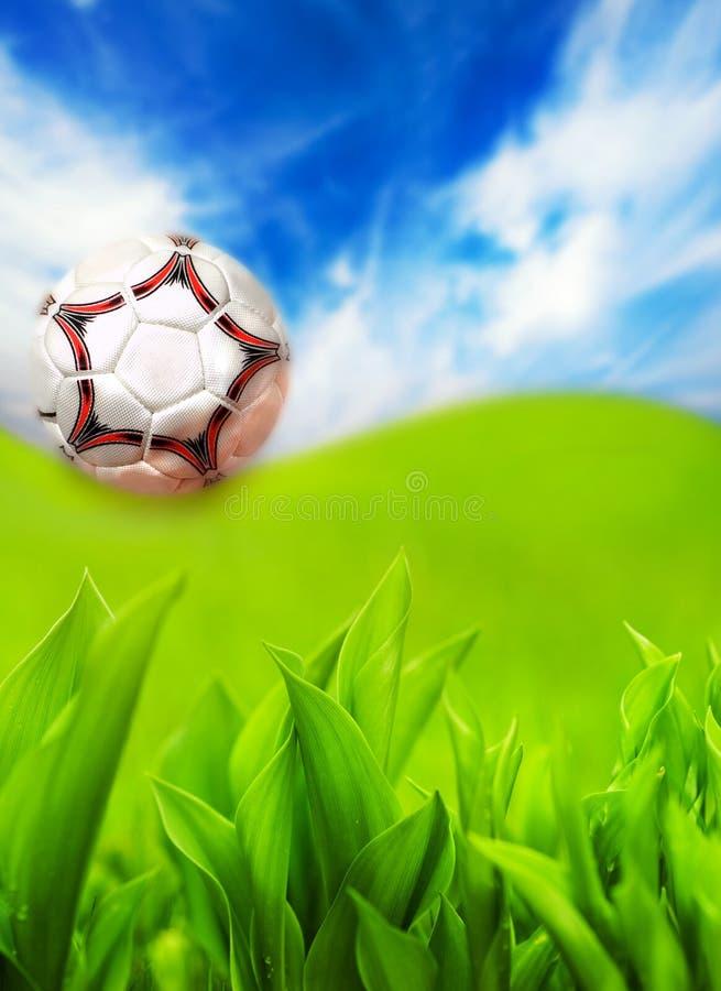 Sfera di calcio su erba verde fotografia stock