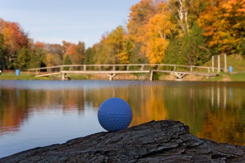 Sfera Di Golf 05 Immagine Stock